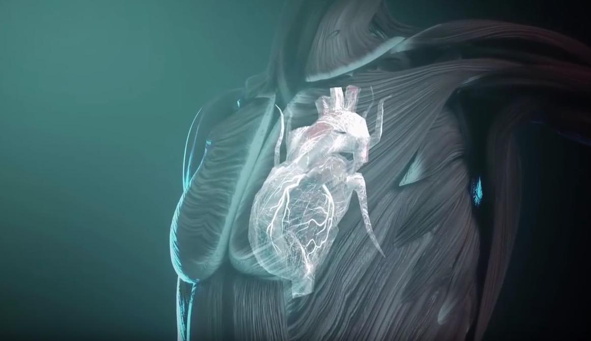 Vidéo – Fascinants fascias : les alliés secrets de notre organisme